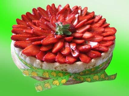 Recette de charlotte printanière mangue/fraise