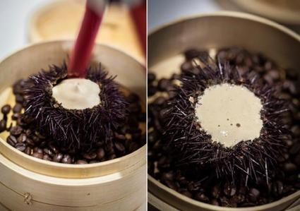 Recette oursins au café illy