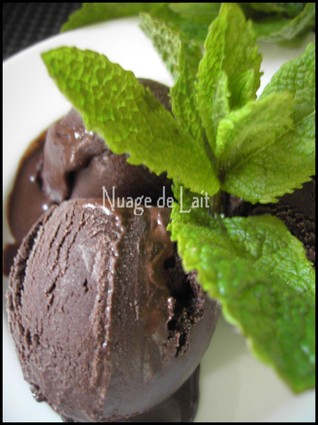 Recette de sorbet chocolat amer-menthe