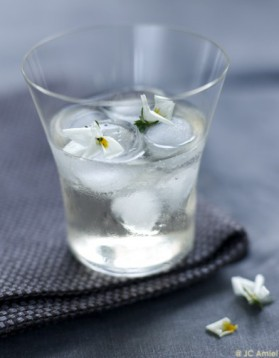 Elderflower spritzer pour 2 personnes