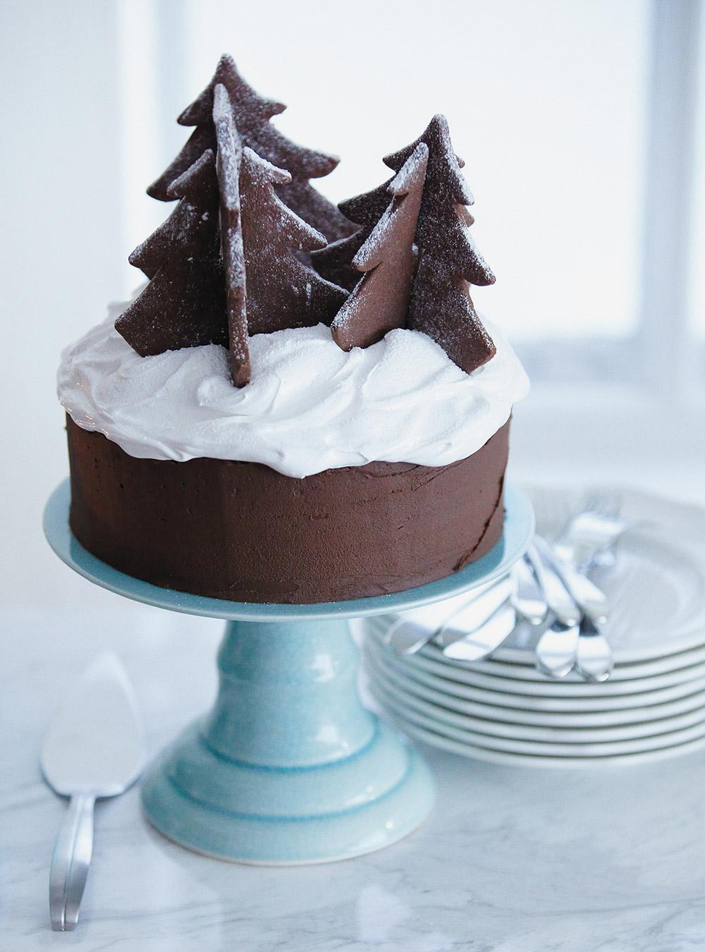 Gâteau au chocolat de noël   ricardo
