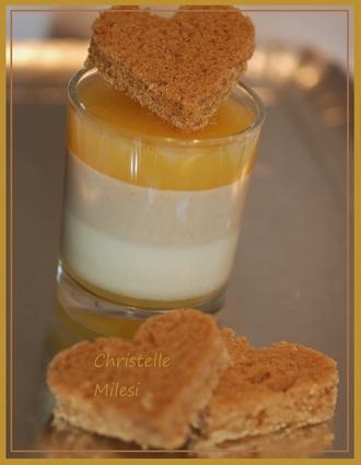 Recette de panna cotta orange et pain d'épices