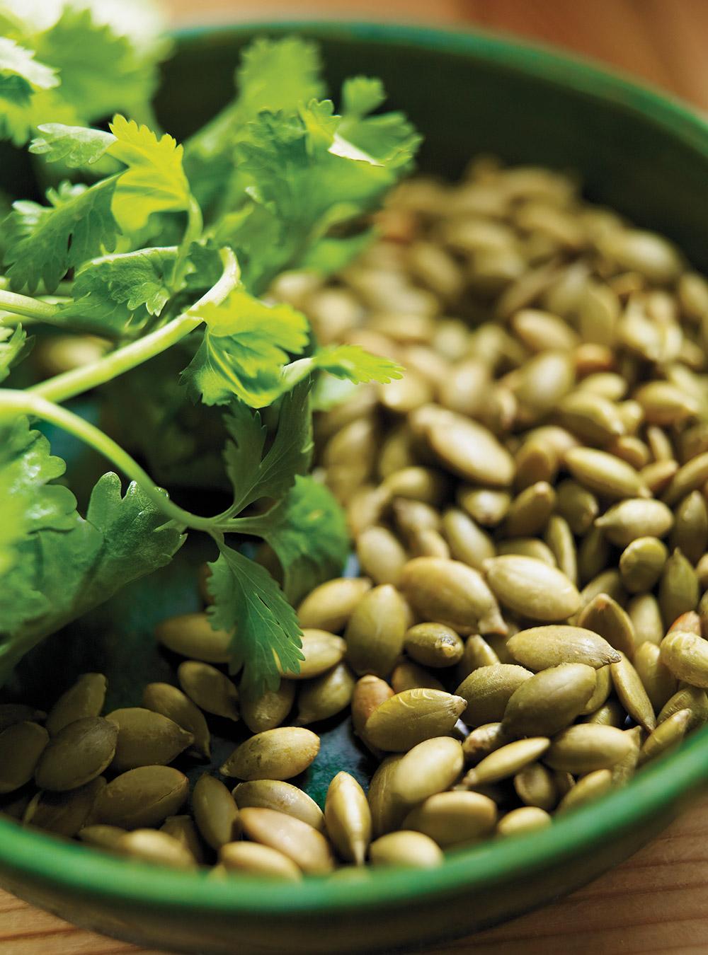Pesto à la coriandre | ricardo