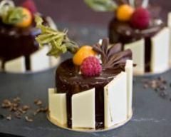 Recette entremets chocolat framboise