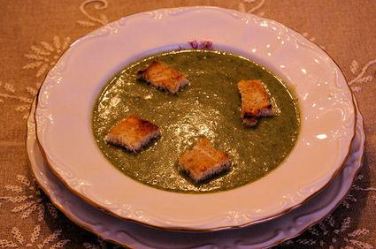 Recette de soupe royale aux orties et aux coquelicots
