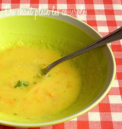 Recette de soupe express de tomates