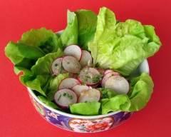 Recette salade verte et radis à la ciboulette