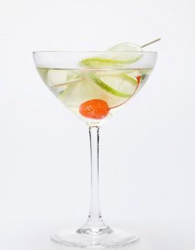Cocktail au martini blanc et tonic pour 1 personne