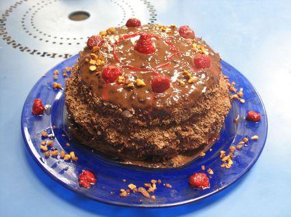 Recette de gâteau génoise chocolat-framboise