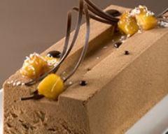 Recette bûche glacée au chocolat et à la mangue