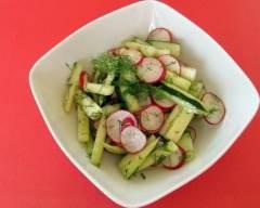 Recette salade de radis et concombre