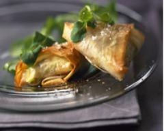 Recette croustillants au saumon