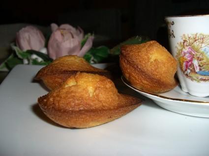 Recette madeleines à la vanille (madeleine dessert)