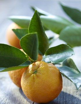 Galette à l'orange et aux amandes