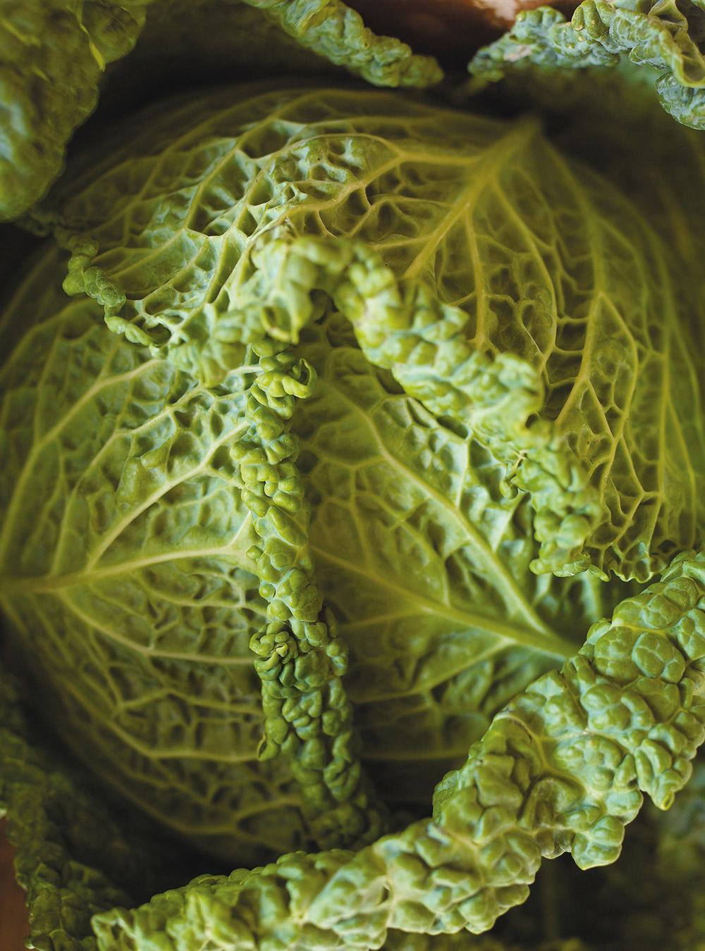 Salade de chou marinée (kimchi rapide, corée)   ricardo