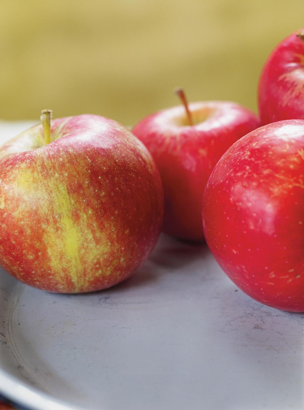 Tarte aux pommes et aux canneberges | ricardo