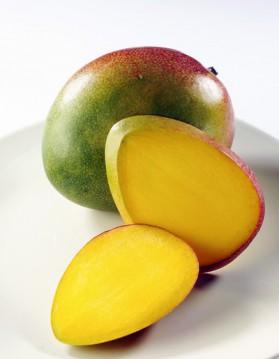 Pudding coulis de mangue pour 4 personnes