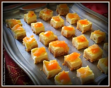 Recette de cheesecake au saumon et chèvre frais