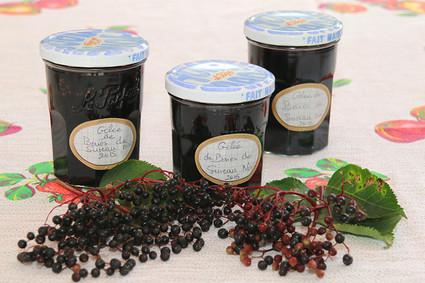 Recette de gelée de baies de sureau noires