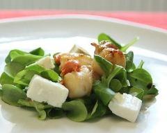 Recette salade de saint-jacques aux herbes