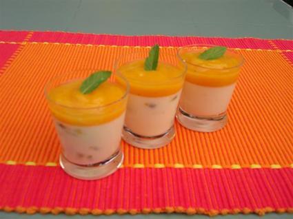 Recette de panna cotta passion-mangue-vanille