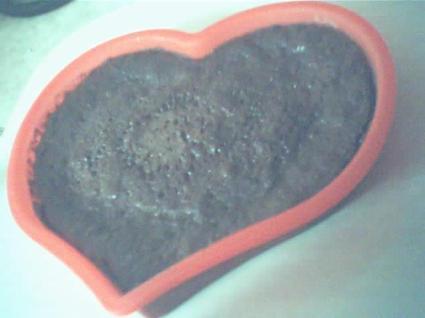 Recette de gâteau au chocolat au micro-ondes simplissime