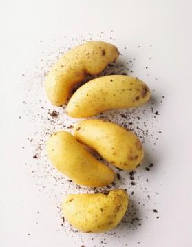 Pommes de terre à la béchamel