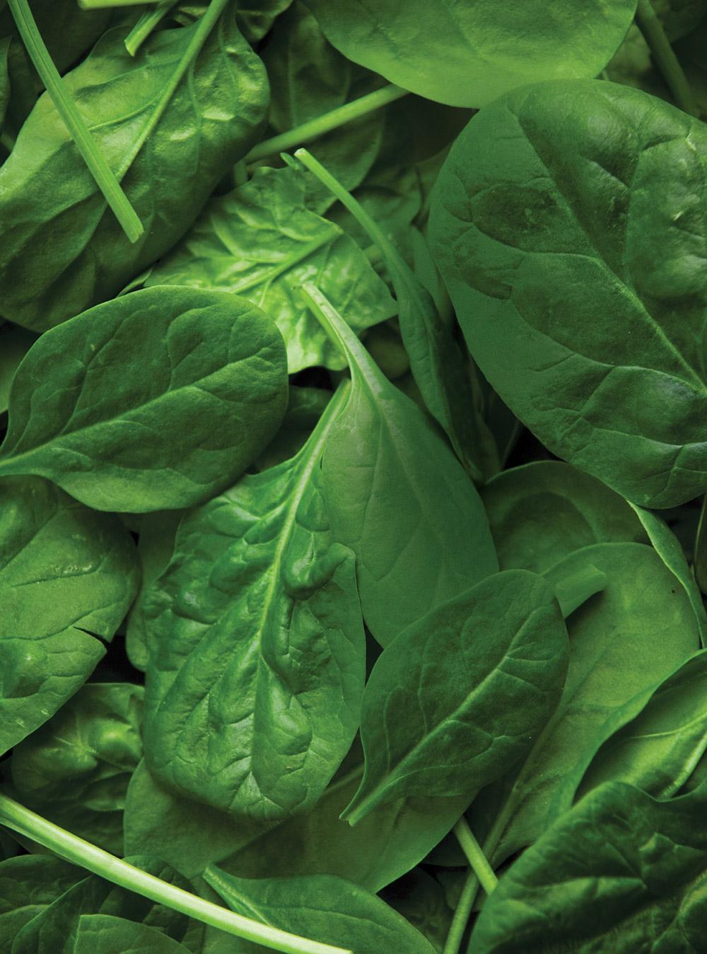 Salade d'épinards et d'avocat aux agrumes | ricardo
