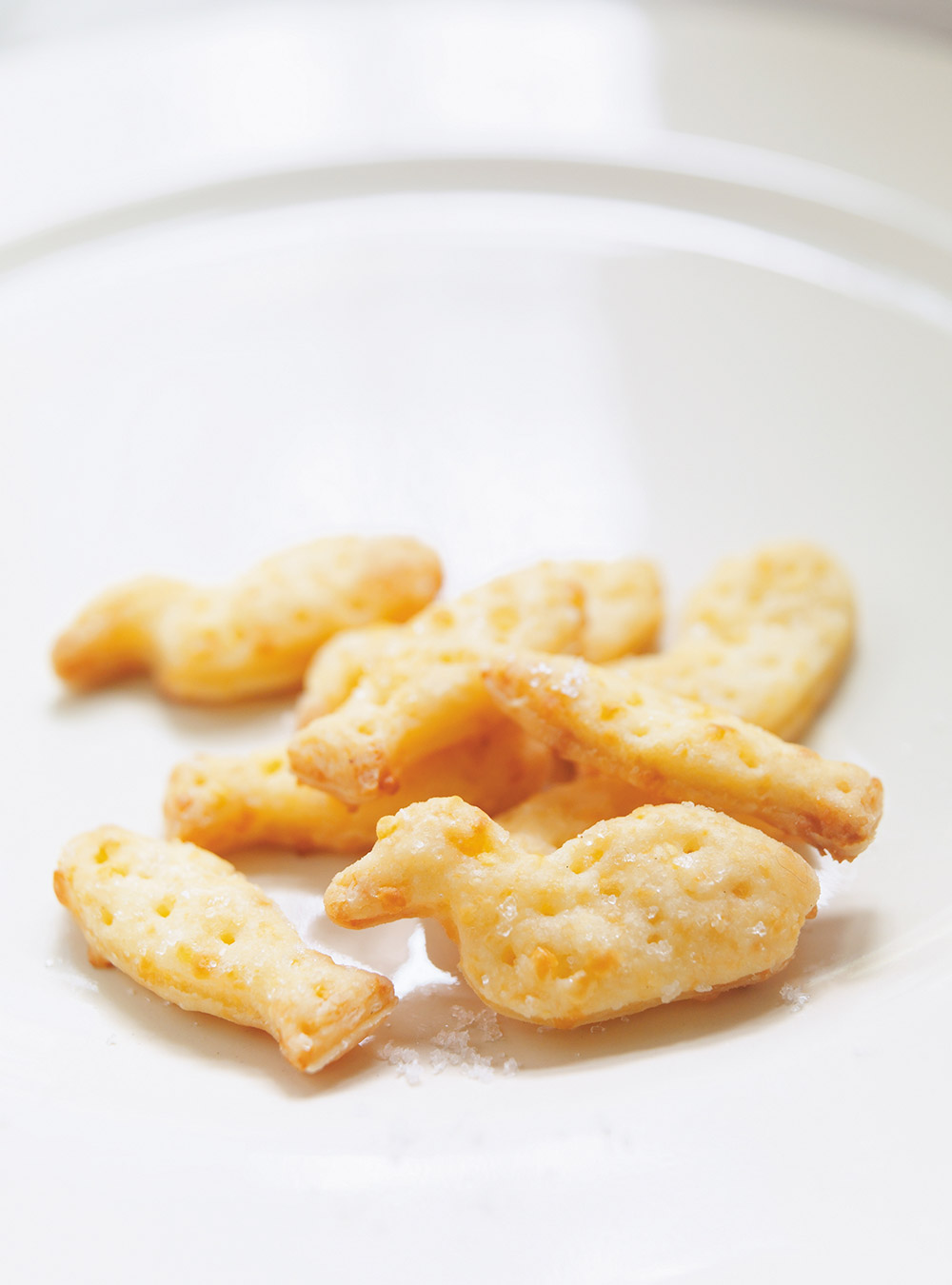Craquelins au fromage type goldfish au cheddar | ricardo