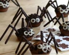 Recette araignée tout chocolat