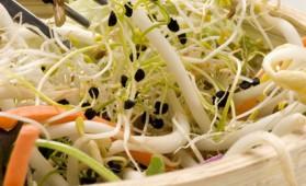 Salade printanière au soja pour 4 personnes