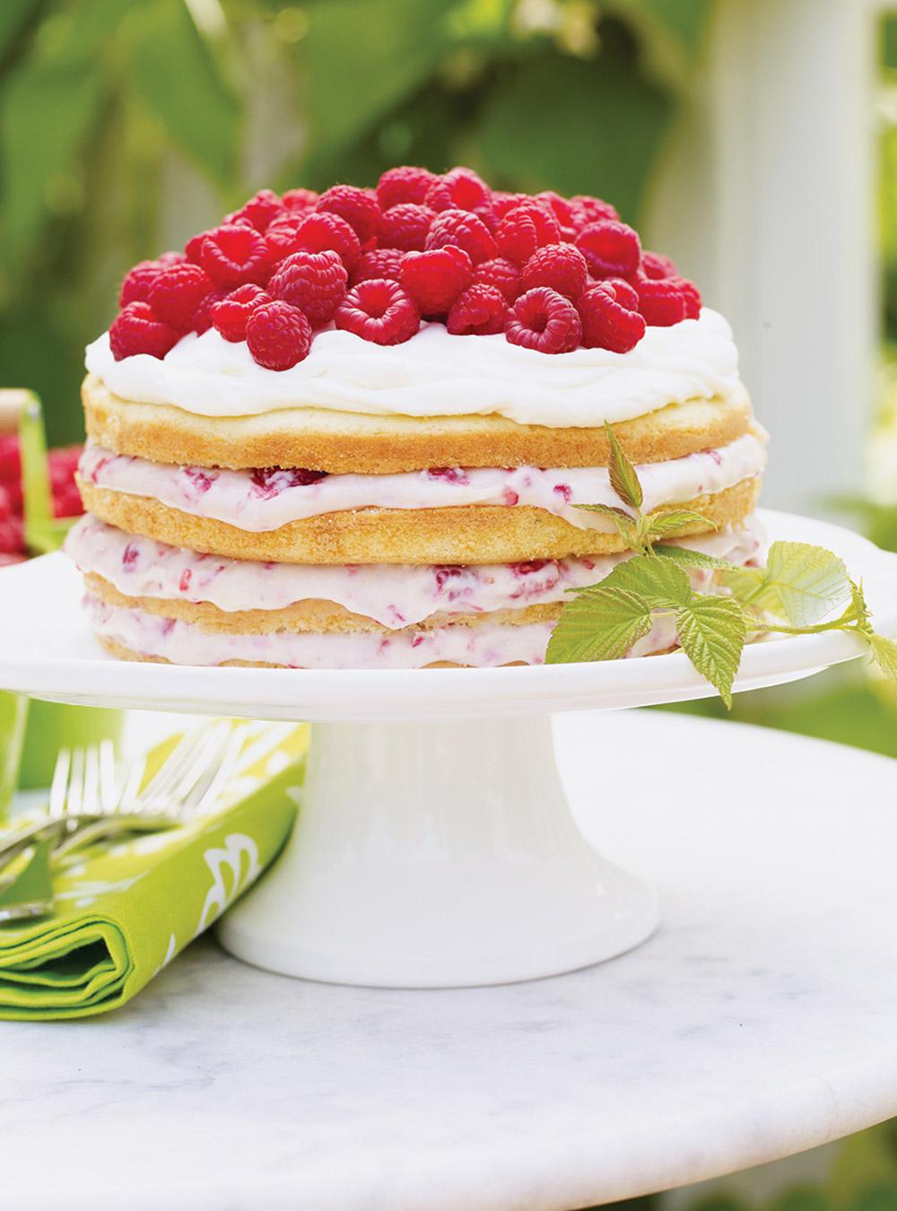 Gâteau aux framboises et à la crème | ricardo