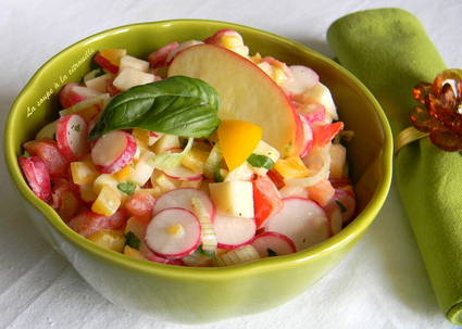 Recette de salade croquante de radis, tomates et pommes
