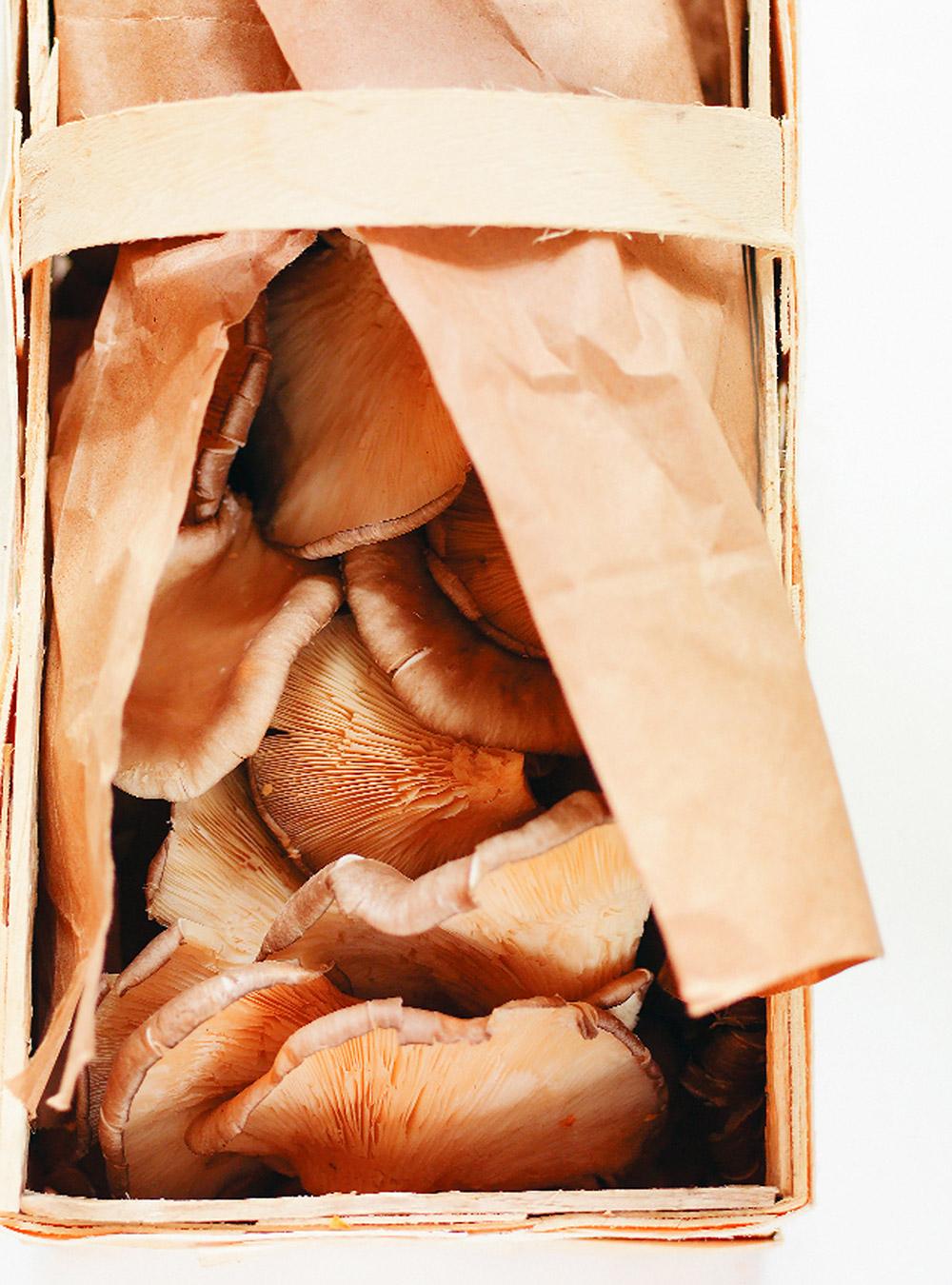 Filets de doré, sauce aux champignons | ricardo