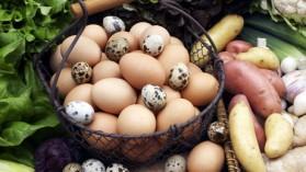 Nids de pomme de terre aux oeufs de caille pour 10 personnes ...