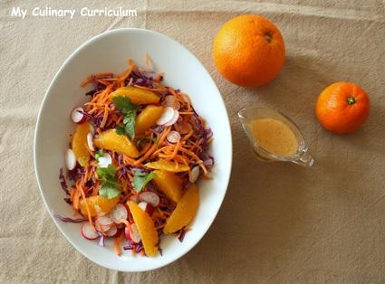 Recette de salade au chou rouge, carottes, radis, orange et sa ...
