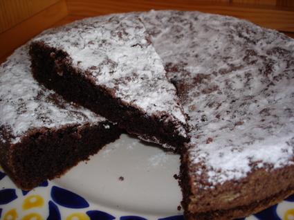 Recette de moelleux au cacao en poudre