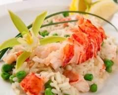 Recette risotto au homard et aux petits pois