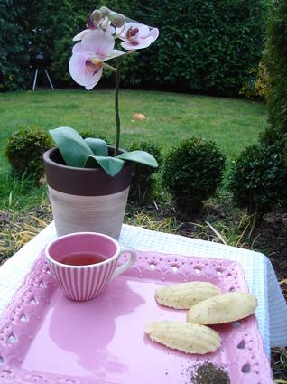 Recette de madeleines au thé vert