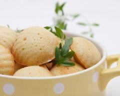 Recette madeleines faciles