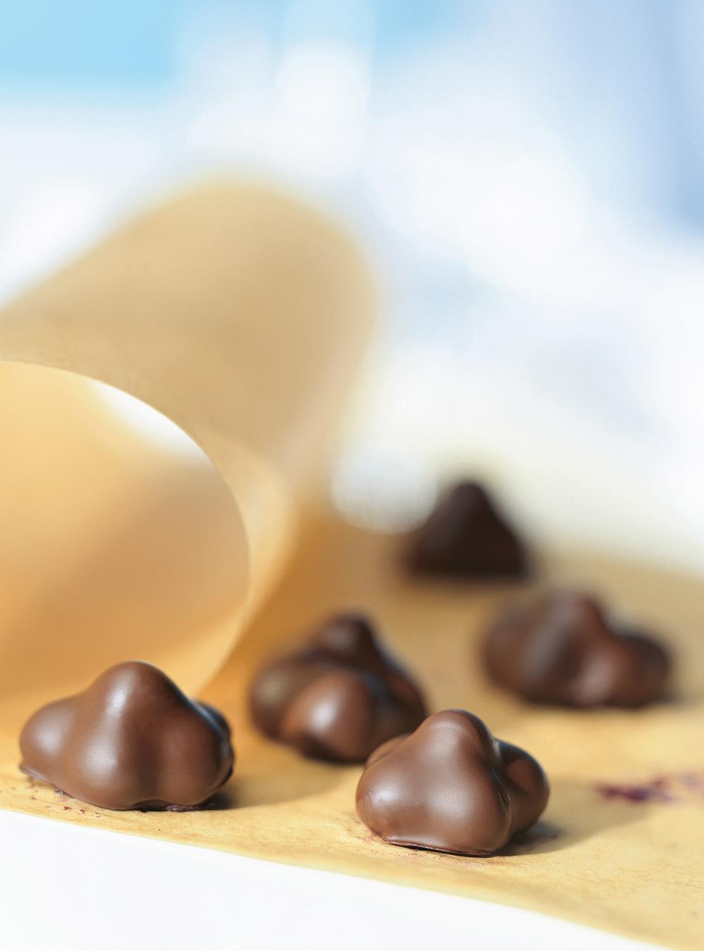 Bleuets au chocolat | ricardo