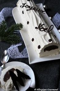 Recette de bûche glacée menthe-verveine, insert chocolat, sans ...