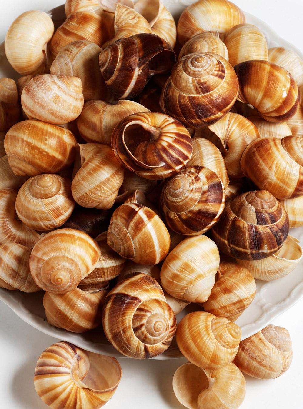 Feuilleté d'escargots au pastis | ricardo