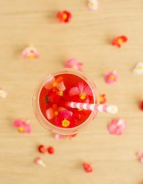 Spritz au jus de cranberry pour 1 personne