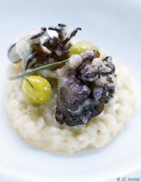 Comme un risotto, friture légère de champignons pour 4 personnes ...