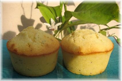 Recette de moelleux citron pavot