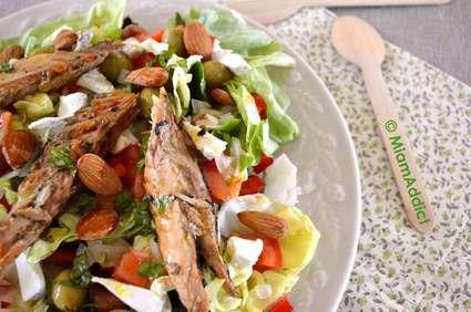 Recette de salade printanière rouge et verte