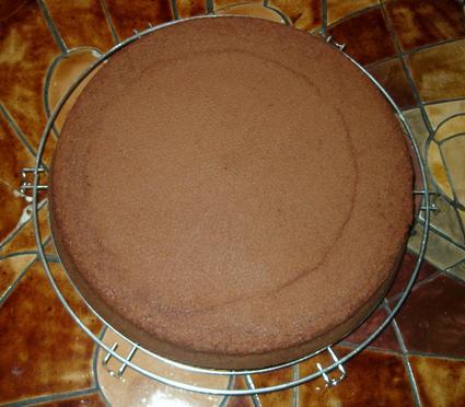 Recette de gâteau au chocolat nestlé