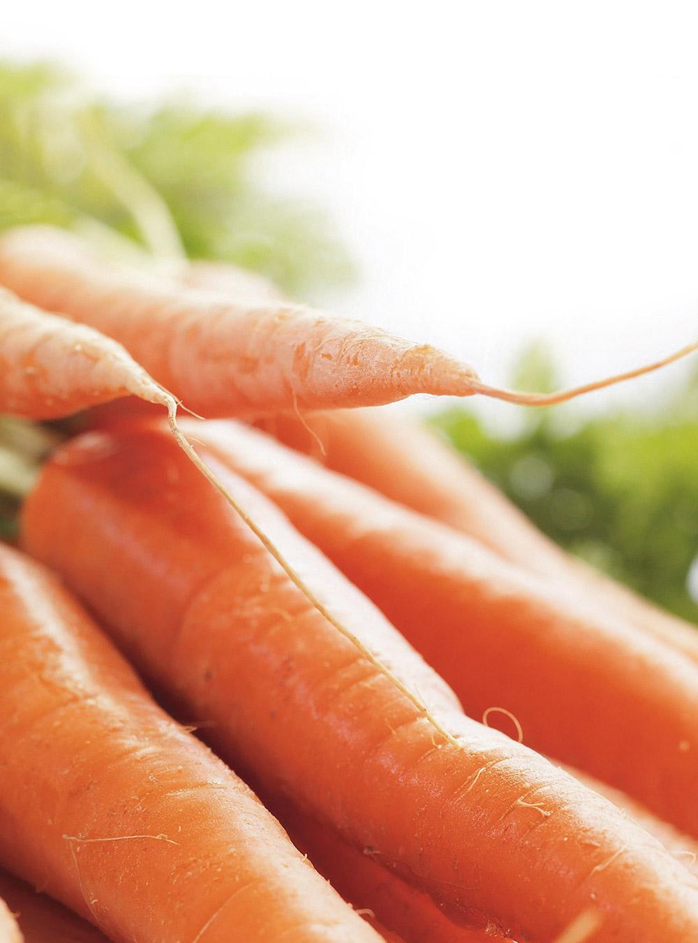 Soupe froide de carottes | ricardo