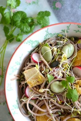 Salade printanière de nouilles soba aux graines germées, fèves et ...